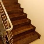 Scari lemn interior esenta fag pe beton